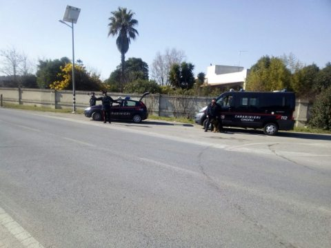 carabinieri-controlli-cinofili.jpg