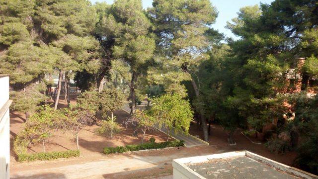 Parco-Cesare-Braico.jpg