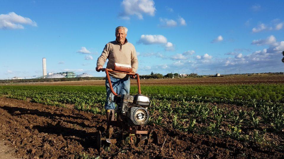 agricoltore-cerano.jpg