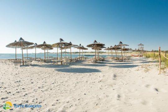 Spiaggia-Torre-Guaceto.jpg
