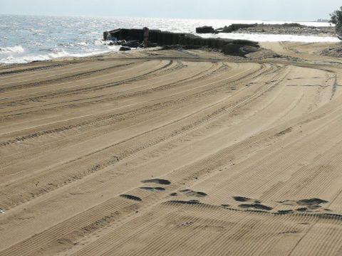 spiaggia-21-4.jpg