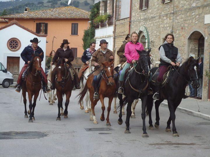turismo-equestre.jpg