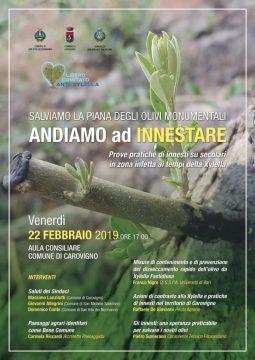 Locandina-Incontro-xylella-Carovigno.jpg