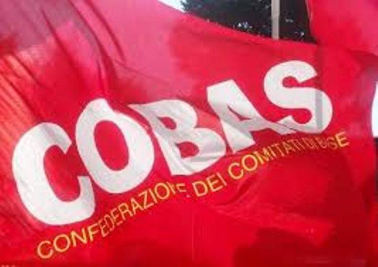 COBAS-1.jpg
